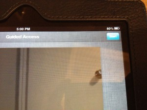 iPad Guided Access Start Button